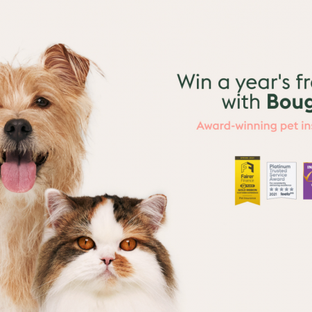 Win BIG with Bought By Many's Golden Ticket Prize Bundle image