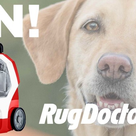 Win a Pet Portable Spot Cleaner with Rug Doctor image