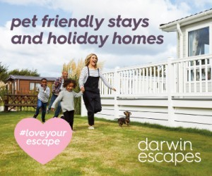 Darwin Escapes advert