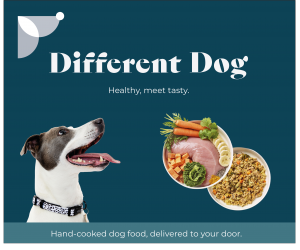 Different Dog advert