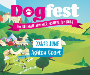 DogFest West advert