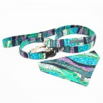 Win a Free Collar and Lead Set image