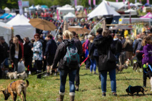 dogfest crowds