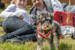family and dogs at dogfest