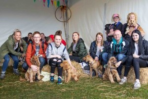 breed meet up at dogfest