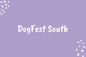 dogfest south
