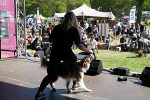 lucy heath on stage at dogfest