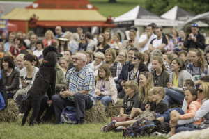 Crowd at Dogfest
