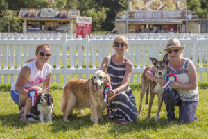 Fun Dog Show winners