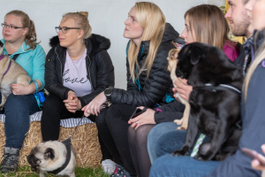 Pug Breed Meet Up at DogFest