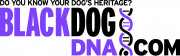 image for Blackdog DNA