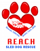 image for Reach Sled Dog Rescue